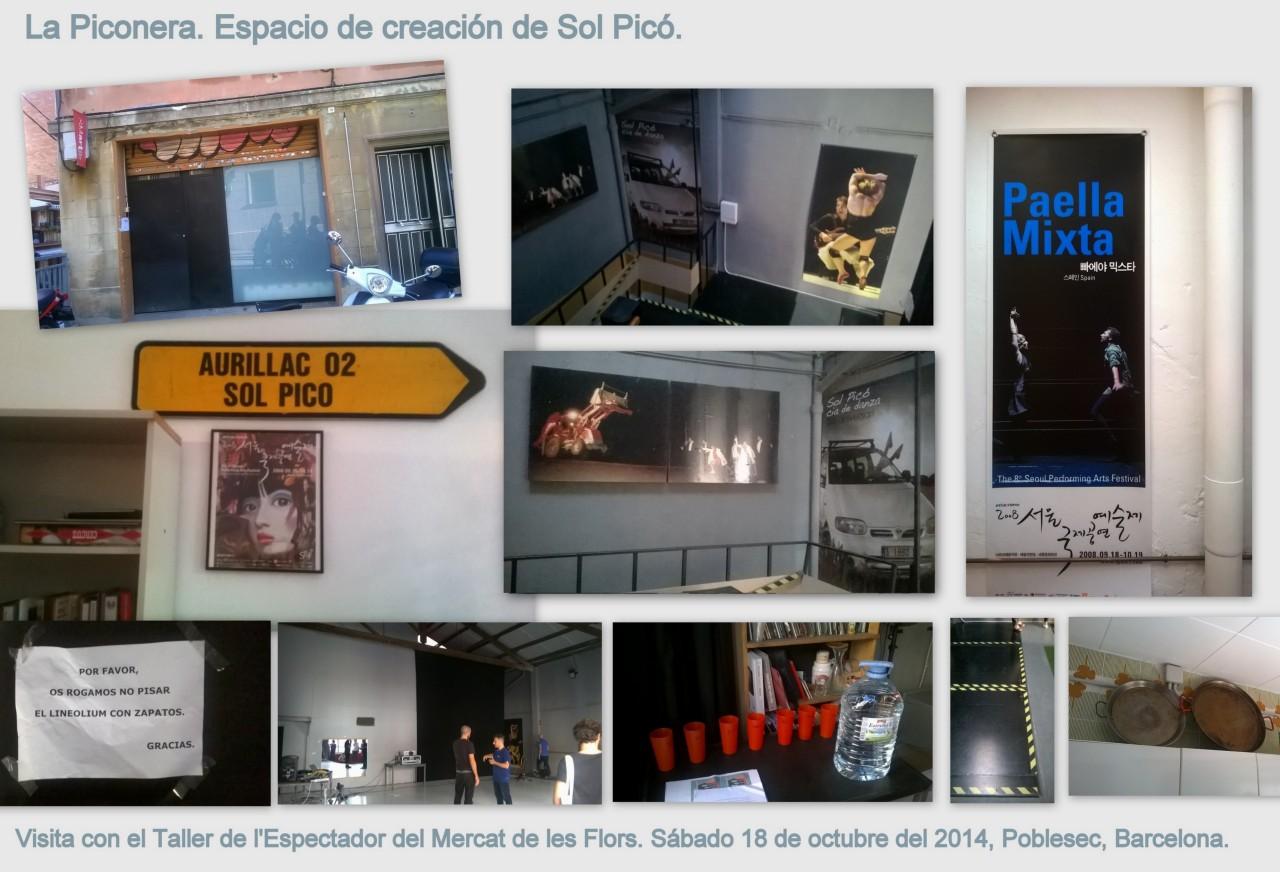 Visita a la Piconera Collage v2
