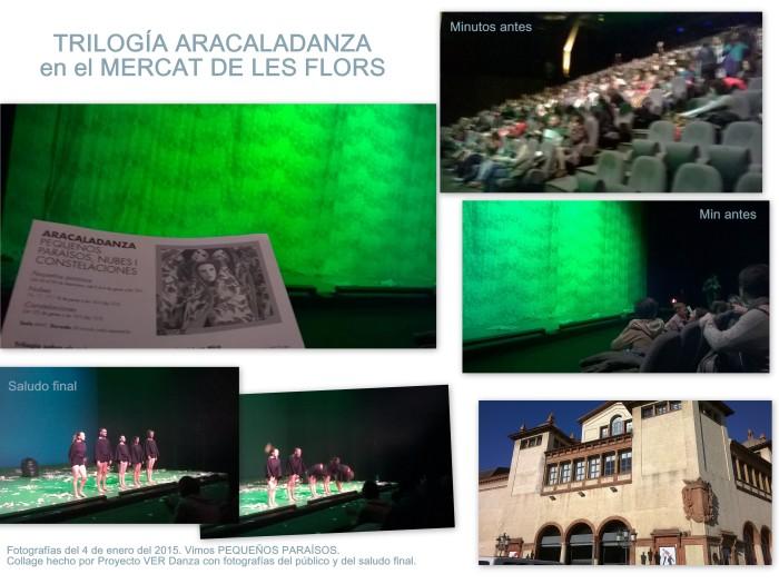 Fotografías de Proyecto VER Danza el 4 de enero del 2015 antes de empezar PEQUEÑOS PARAÍSOS de ARACALADANZA así como el saludo final. Lugar: Mercat de les Flors
