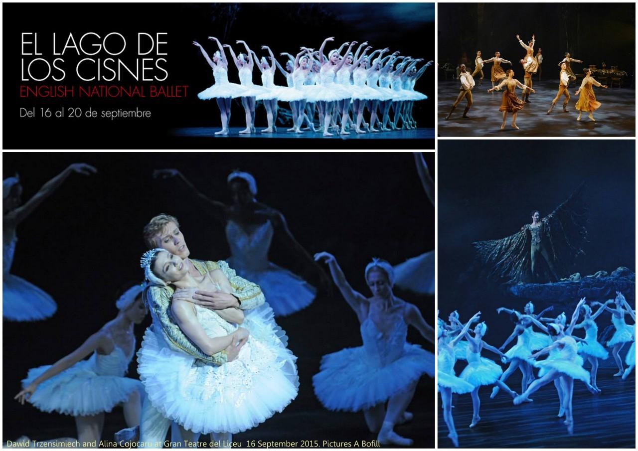 Fotografías de A Bofill de la actuación del miércoles 16 de septiembre del 2015 del LAGO CISNES del ENB en el Teatre del Liceu con Dawid Trzensimiech and Alina Cojocaru. Collage a partir de fotos publicadas en el facebook del Liceu.